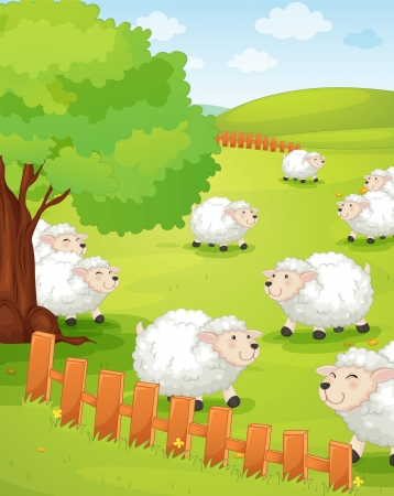 sheep farm: illustration of a lamb on green grass