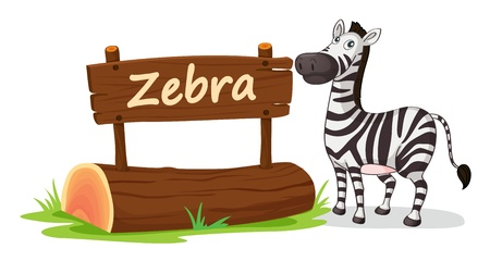 sripes: illustration of zebra on a white background