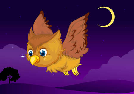 illustration of flying owl in a dark night Vector