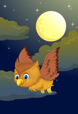 illustration of flying owl and full moon in a dark night Vector