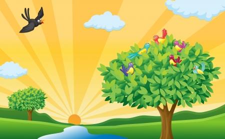 ilustración de los árboles, las aves y los rayos del sol en una hermosa naturaleza Ilustración de vector