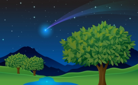 illustration of tree and comet in a dark night Vector