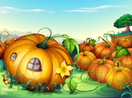 gourds: illustration of a bunch of yellow pumpkins