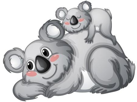 koalabeer: illustratie van een koala op een witte backgroundbackground Stock Illustratie
