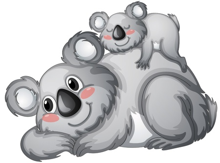 illustration of a koala bear on a white backgroundbackground Vector
