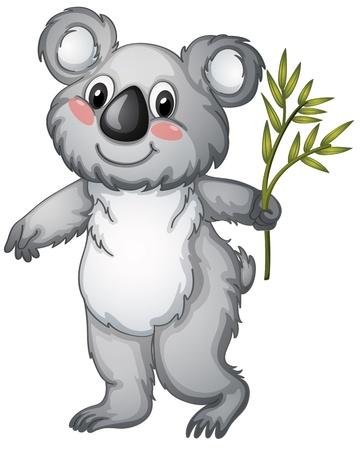 illustratie van een koala op een witte achtergrond