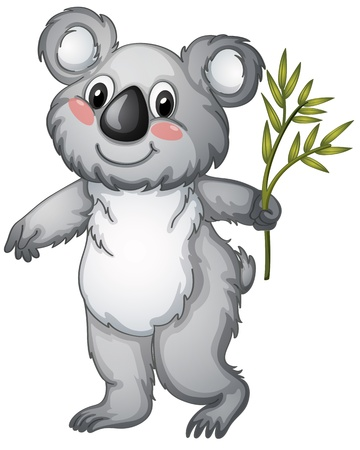 illustration of a koala bear on a white background Vector