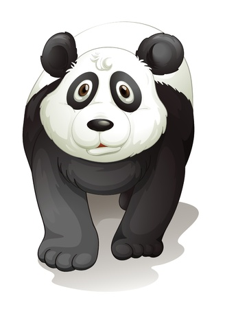 illustration of a panda on a white background Vector