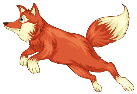 illustration of a fox on a white background Vector