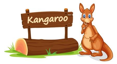 kangourou: illustration de kangourou et la plaque de nom sur un fond blanc