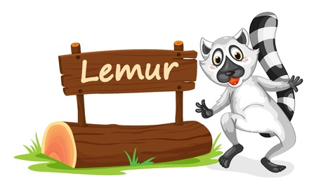 madagascar: illustration of Lemur and name plate on a white