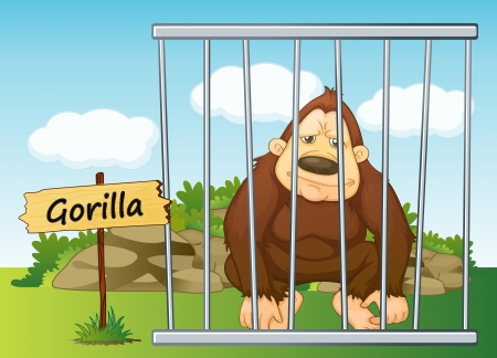 cruel zoo: illustration of a gorilla in cage and wooden board