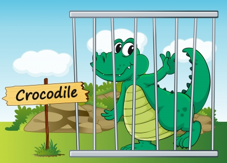 illustration of a crocodile in cage and wooden board Vector