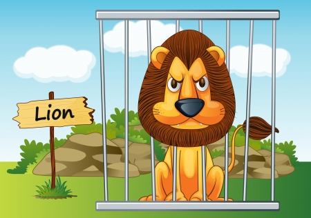 angry lion: illustration of a lion in cage and wooden board
