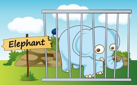 illustration of a elephant in cage and wooden board Vector