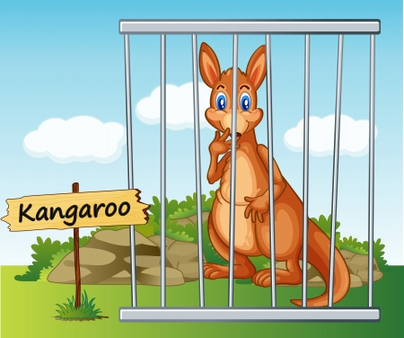 cruel zoo: illustration of a kangaroo in cage and wooden board