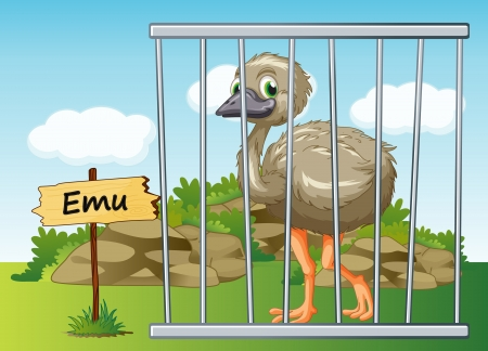cruel zoo: illustration of a emu in cage and wooden board