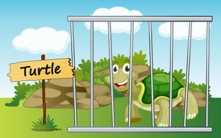 illustration of a tortoise in cage and wooden board