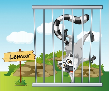 illustration of a lemur in cage and wooden board Vector