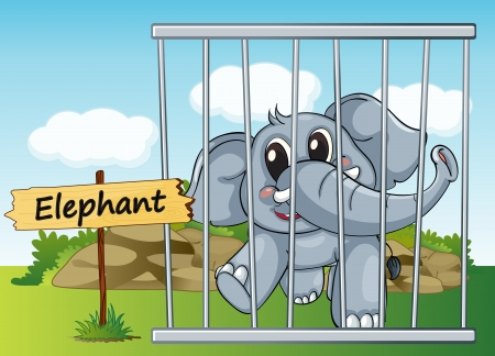 cruel zoo: illustration of a elephant in cage and wooden board Illustration