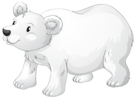 vulnerable: illustration of polar bear on a white background