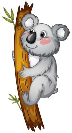 koala bear: illustration of a white bear on a white background Illustration