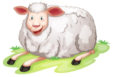 illustration of a sheep on a white background Stock Vector - 14607997