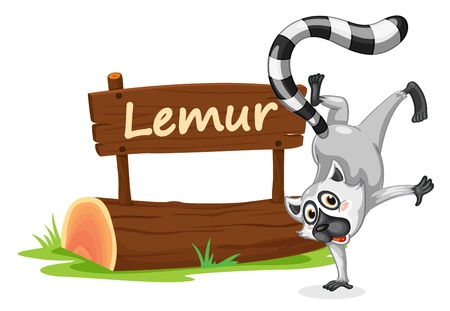 illustration of Lemur and name plate on a white Vector
