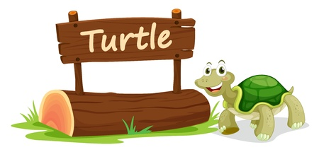 single word: illustration of turtle and name plate on a white Illustration