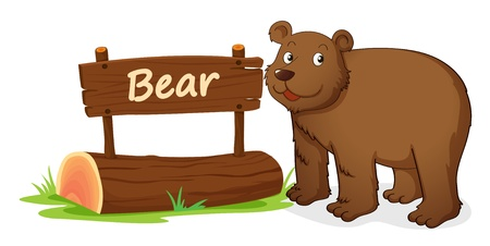 illustration of bear and name plate on a white Vector
