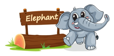 post scripts: illustration of elephant and name plate on a white
