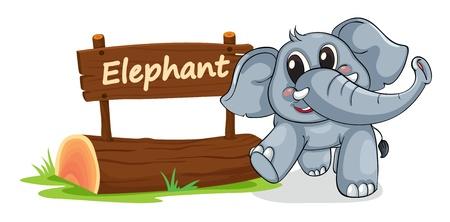 illustratie van de olifant en naamplaatje op een witte