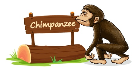 illustration of chimpanzee and name plate on a white Vector