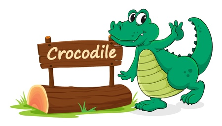 name plate: illustration of crocodile and name plate on a white