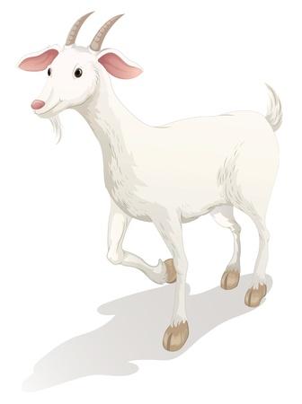 cabras: ilustración de una cabra sobre un fondo blanco
