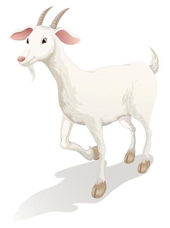 illustratie van een geit op een witte achtergrond Vector Illustratie