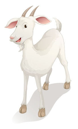 cartoon sheep: illustration of a goat on a white background