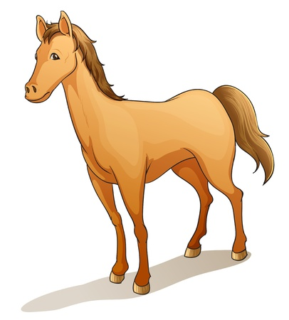 illustration of a horse on a white background Vector