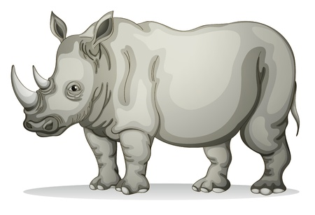 nashorn: Darstellung eines Rhinoceros auf einem weißen Hintergrund Illustration