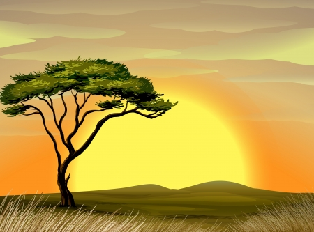 the national flag of kenya: ilustración de un paisaje hermoso y el árbol