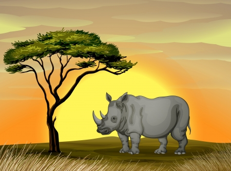 illustration of a Rhinoceros standing under a tree Stock Vector - 14841284