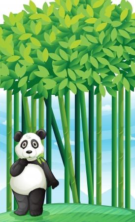 endangered: illustration of a panda in nature Illustration