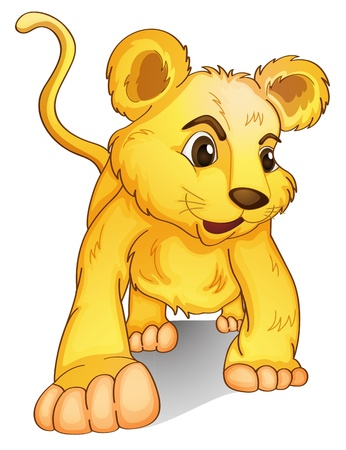 illustration of a cub on a white background Vector