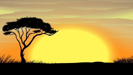 desert sun: illustration of a  a tree in the dark nature