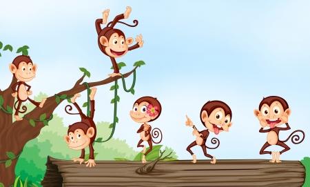monos: Ilustración de un grupo de monos y la naturaleza