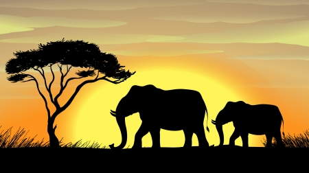 land mammals: illustration of a Elephant standing under a tree Illustration
