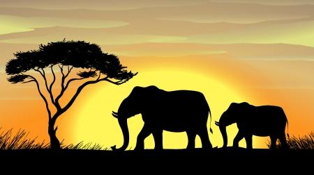 land mammal: illustration of a Elephant standing under a tree Illustration