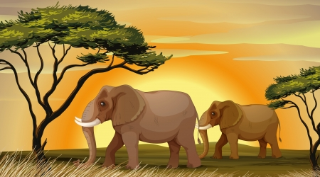 illustration of a Elephant standing under a tree Stock Vector - 14879334