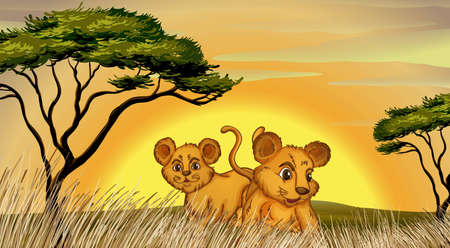 illustration of two cubs in the jungle Stock Vector - 14879331