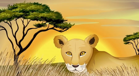 illustration of a tiger and tree in nature Vector